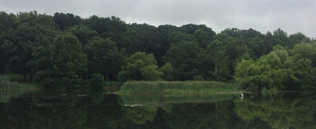 Briant Park, Township of Springfield, NJ | Victoria Carter, Realtor
